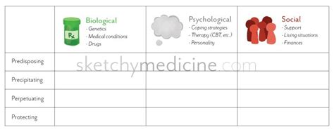 Biopsychosocial Formulation For Psychiatry With Printable Pdf Sketchy Medicine Psychological Formulation Template