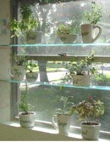 1000 Images About Greenhouse Ideas On Pinterest Natural Window Herb Garden Ideas