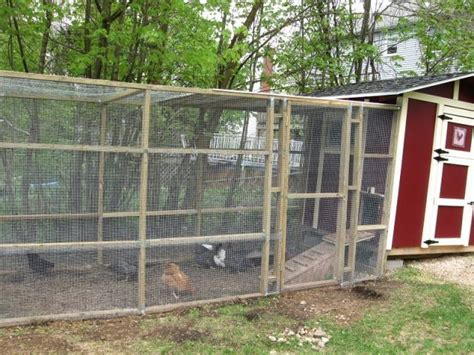 backyard chicken run backyard chicken run backyard chicken run 86 with