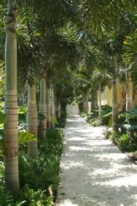 Landscape Architect Florida Dwy Landscape Architects Residential Landscape