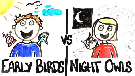 Early Late early birds vs owls