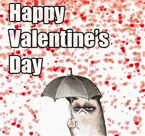 happy valentines day gif valentinesday grumpycat