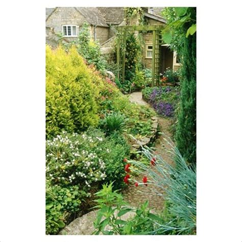 Garden Arch Narrow Gap Photos Garden Plant Picture Library Narrow City
