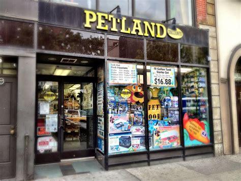 petland discounts pet stores new york ny yelp