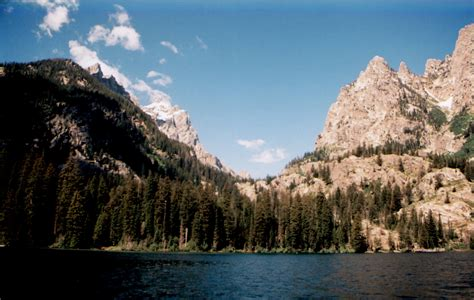 boat tour jackson lake jenny lake boat ride buffalo roam tours jackson hole