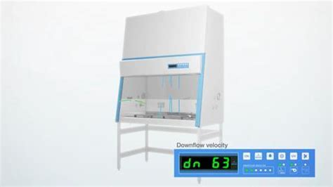 thermo fisher biosafety biological safety cabinets clean thermo fisher