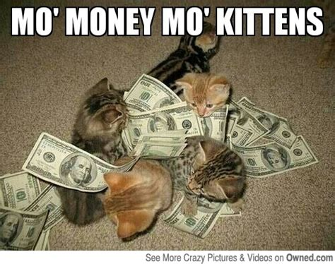 Funny Money Meme - 50 most funny money pictures and images