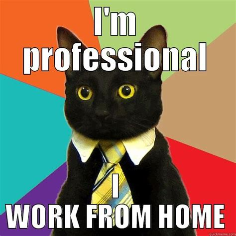 Professional Meme - work from home quickmeme