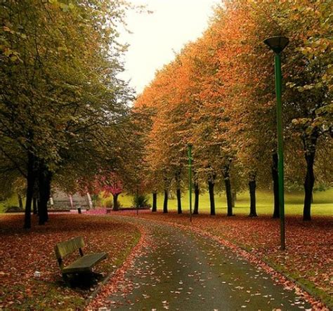 imagenes pelicula otoño en nueva york hermosos paisajes para recibir el oto 241 o