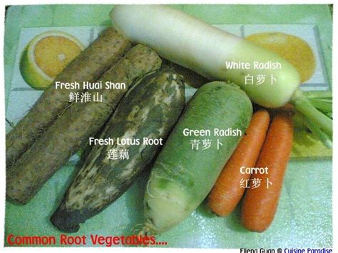 identifying root vegetables common root vegetables