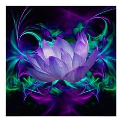 Definition Of A Lotus Flower Purple Lotus Flower And Its Meaning Poster Zazzle