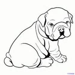 bulldog coloring pages 12 coloring pages of bulldog print color craft