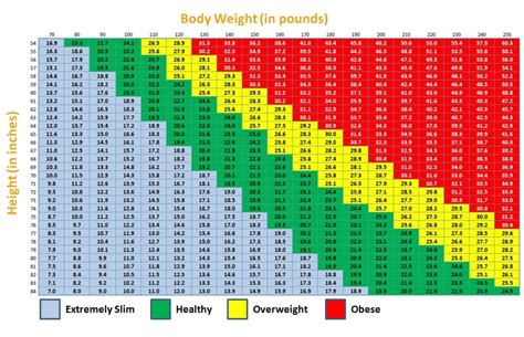 is your bmi mass index something to worry about