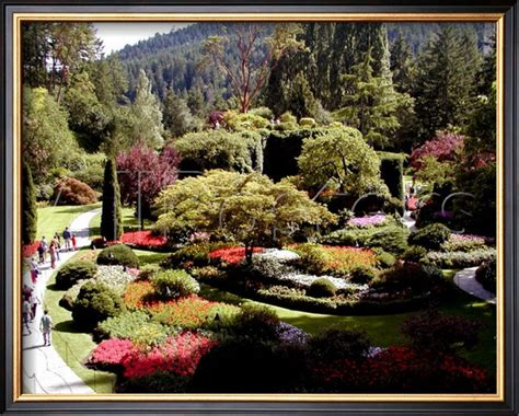 Butchart Gardens Discount by Butchart Gardens Vancouver Island Canada Framed Giclee Print Canvas Paintingsoncanvas Net