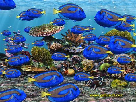 Free Moving Fish Aquarium Screensaver