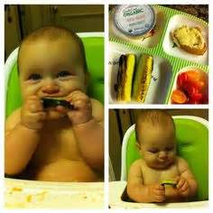 baby led weaning 70 841644983x 70 best baby led weaning images food infant finger foods baby finger foods