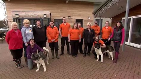 dog house manchester ct petplan adch animal charity awards 2015 manchester
