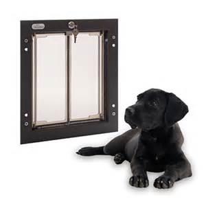 Energy Efficient Dog Doors Dog Doors Orvis