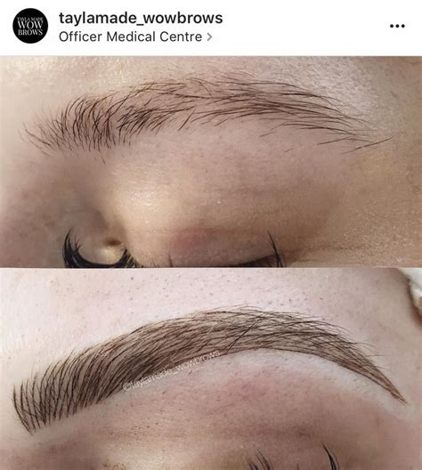 feather tattoo melbourne 111 best cmh tayla made wow brows feather touch