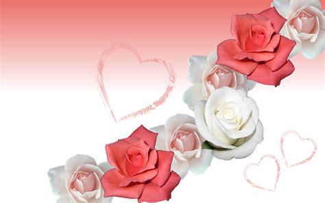 wallpaper flower rose love love rose flowers wallpaper wallpaper wallpaperlepi