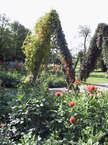 Britzer Garten Herbst by Dahlienschau Im Britzer Garten Berlin Herbst 2007