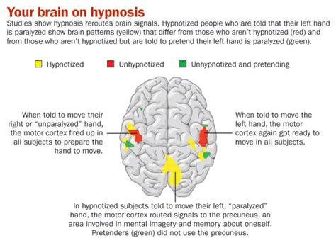 how to get from to success the hypnotic journey books can i be hypnotized find out right now