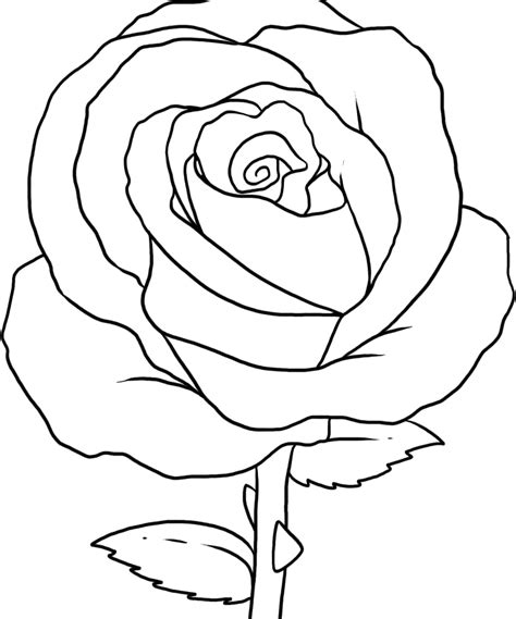 coloring page roses coloring pages rose az coloring pages