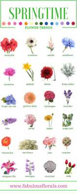 25 best ideas about names of flowers on pinterest types