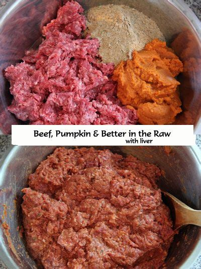can dogs eat ground beef best 25 food ideas on pet food