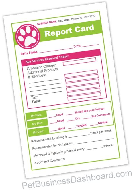 Report Card Template Palm County by Pet Sitting Report Card Template Pet Grooming Report Cards