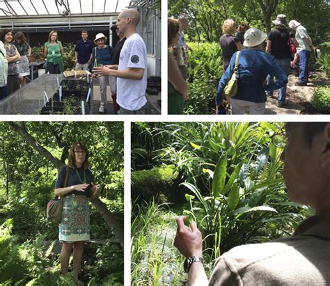 Missouri Botanical Garden Events Missouri Botanical Garden A Fascinating Fopd Update Plant Science Today