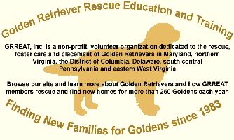 northern virginia golden retriever rescue golden retrievers golden retriever forums view single post september 2016
