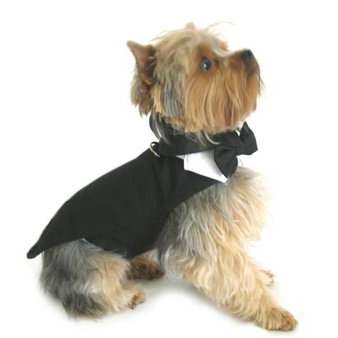 puppy tuxedo black tuxedo tails top hat and bow tie collar
