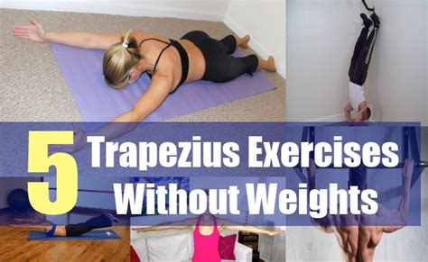 5 trapezius exercises without weights exercises for the