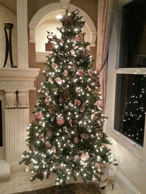 my seashell christmas tree xo ghada christmas pinterest