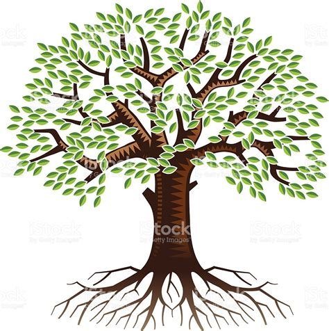 tree with big tree with roots stock vector 514730943 istock