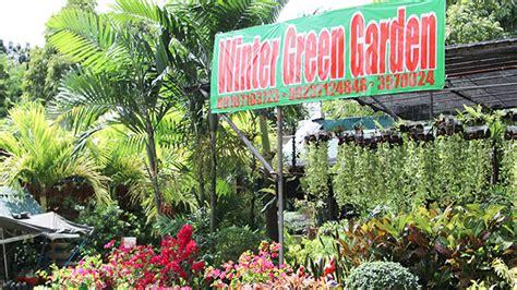 tree shop white plains 7 must visit garden shops in white plains quezon city rl