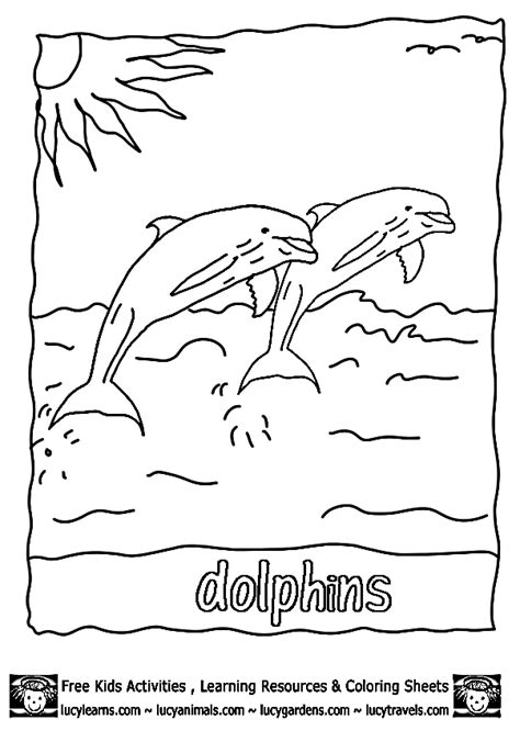 preschool coloring pages dolphin dolphin coloring pages worksheet lydia pinterest