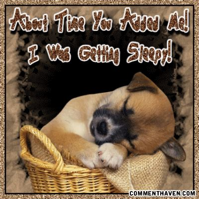 ta puppies thanks for the add ta puppy sleepi image