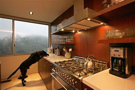 Galley Kitchen Design With Island by Mid Century Modern Kitchen Design Notes