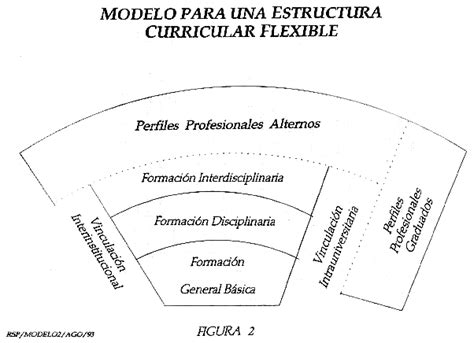 Modelo Curricular Semiflexible Estilos De Curr 237 Culum Jimenachavezm