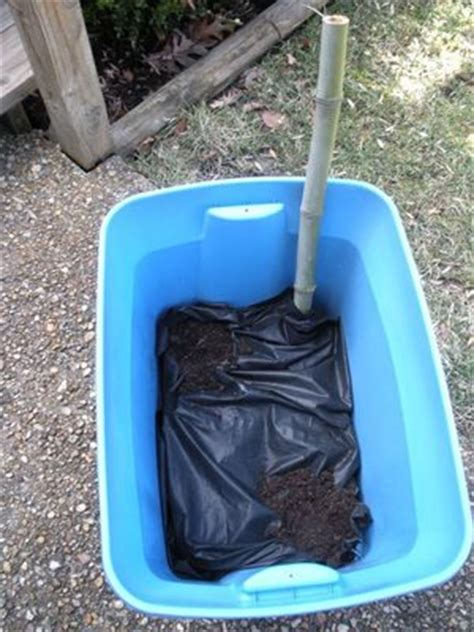 plastic container gardening turn a plastic tote into self watering container garden