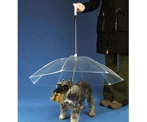 leash umbrella umbrella leash howtogobroke offering you the best of the interwebs