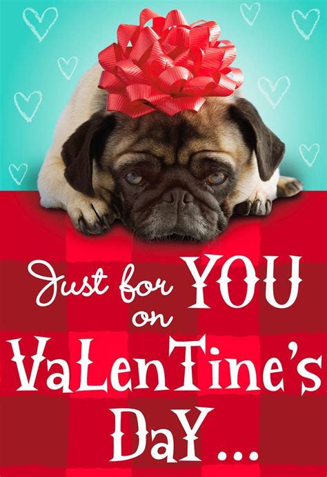 Pug With Red Bow Valentine's Day Card   Greeting Cards