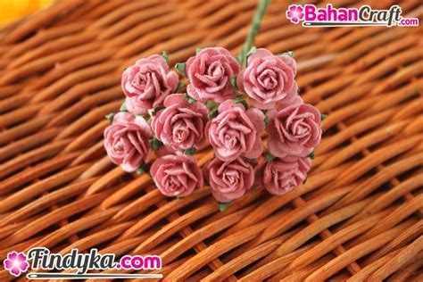 Paku Mawar Paku Mawar Lokal findyka aplikasi bunga mawar kecil violet