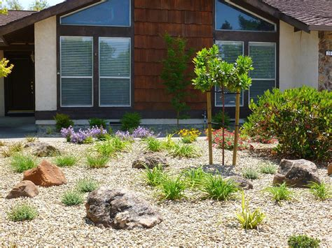 low maintenance backyard landscaping ideas low maintenance backyard design ideas low maintenance