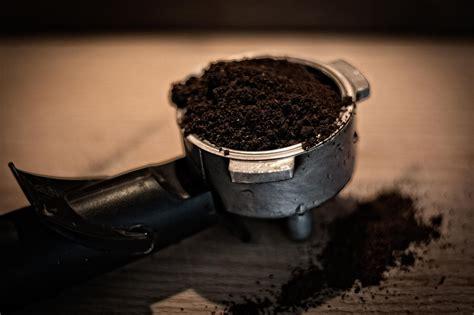Kaffeesatz Gegen Ameisen by 10 Tipps Das Kann Mit Kaffeesatz Machen Wie Das