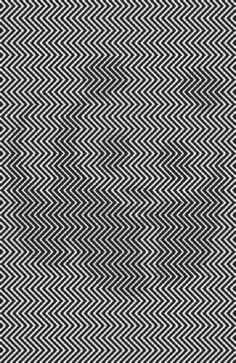 Can See What You Search For On Find The Panda The Science The Optical Illusion