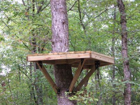 backyard zip line platform platform for the the zip line treehouse outdoor