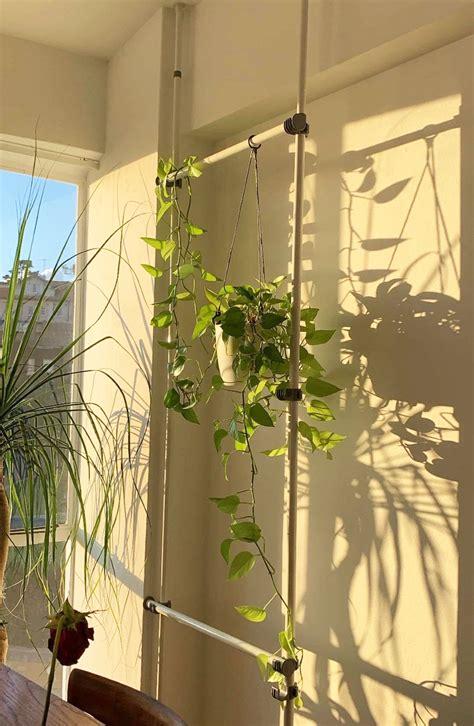 tension rod hack lets  hang indoor plants